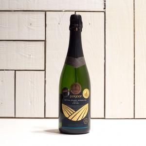 Polgoon Seyval Blanc Sparkling 2014
